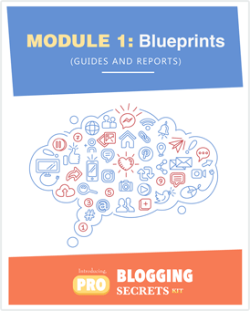 Pro-Blogging Secrets Kit Module 1